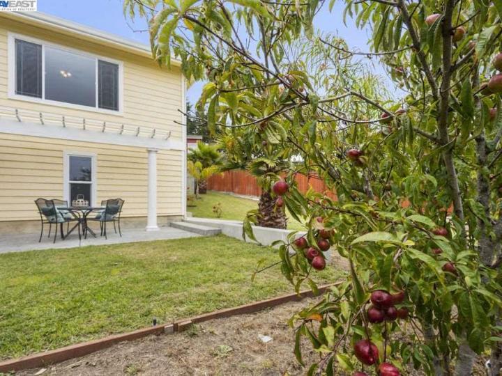 1534 Ranch Rd Bodega Bay CA Home. Photo 31 of 38