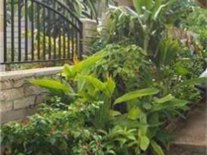 Honolulu HI Home. Photo 6 of 10