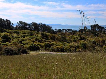 000 Sea View Ter, Watsonville, CA