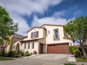 1741 Campanula Dr, Gale Ranch, CA