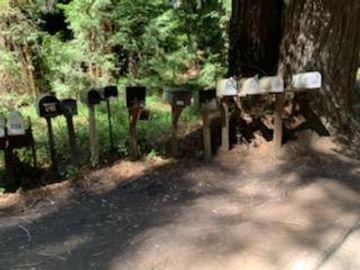 27 Wildwood, Boulder Creek, CA