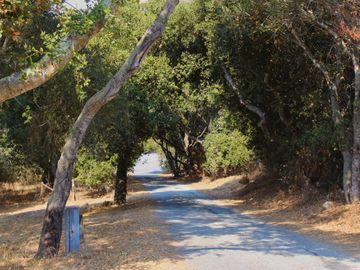 334 San Benancio Rd, Salinas, CA