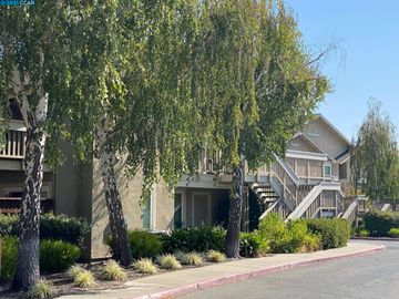 3839 Crow Canyon Rd, Cobblestone, CA