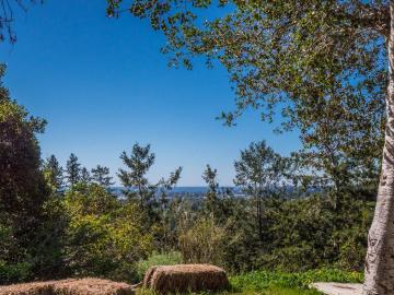 Glen Cyn Santa Cruz CA. Photo 3 of 18