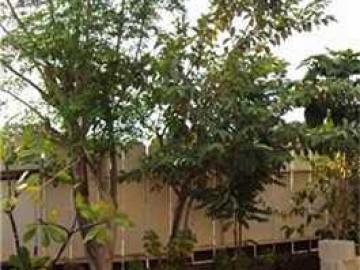 Honolulu HI Home. Photo 4 of 10