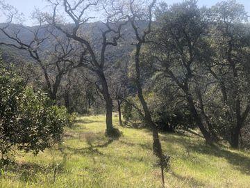 Lambert Flts, Carmel Valley Village, CA